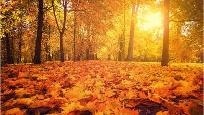 Autumnal equinox 2021: What you need to know